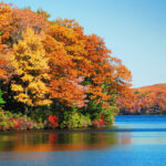 Camping in Fall